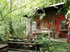 星级民宿评选助力鲁山创建全域旅游示范县