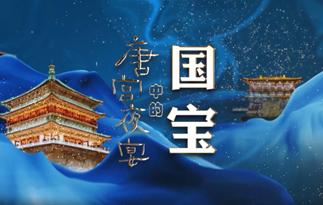 唐宫夜宴中的国宝——你以为唐朝只有小胖妞吗?